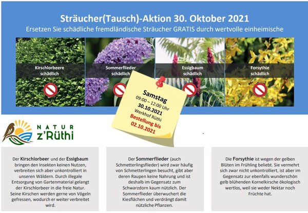 Sträucher(Tausch)-Aktion 2021